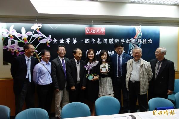 成功大學與國際合作,首次把蘭科植物「小蘭嶼蝴蝶蘭」的全基因體解序,有助蘭花產業。(記者吳柏軒攝)