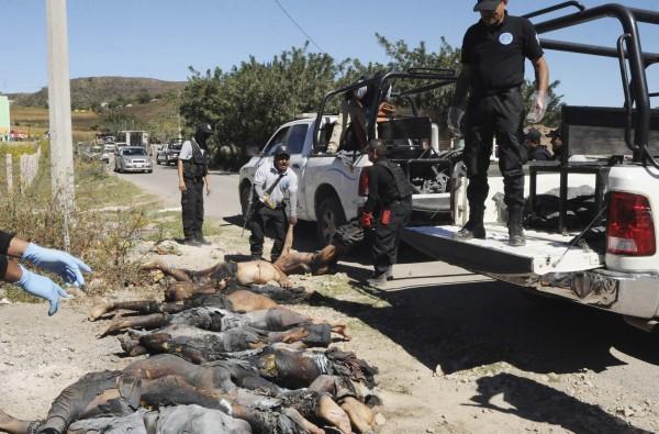 墨西哥格雷羅州27日在路邊發現11具男性焦屍,目前無法確認是否與學生失蹤案有關。(路透)