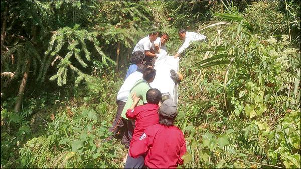 南庄鄉戴姓男子選前一早上山捕蜂,慘遭虎頭蜂螫死。(記者鄭鴻達翻攝)