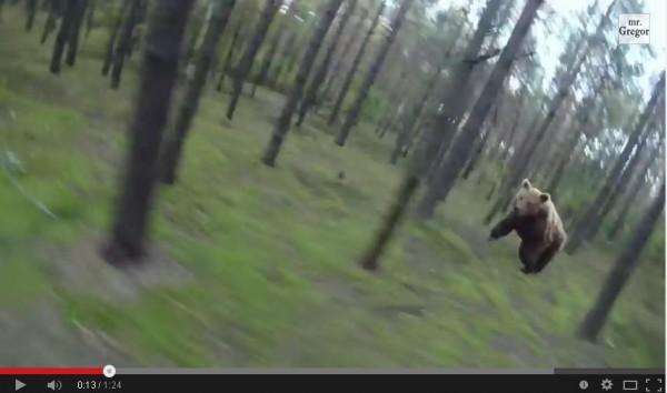 外國男子在森林中騎單車時,竟遇上野生棕熊狂追。(圖擷取自YouTube)