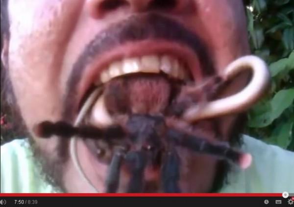 巴西男自稱訓練有毒動物長達15年,竟將大蜘蛛與毒蛇放入口中。(圖擷取自YouTube)