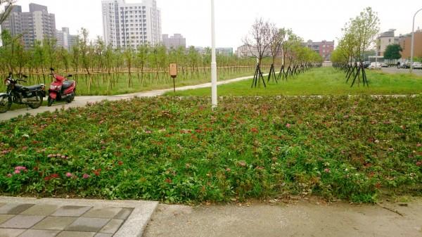 高雄市樹木銀行開放啟用,提供休憩新綠地。(記者洪臣宏攝)