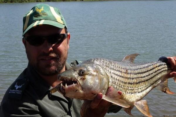 29歲的雅克一時貪玩,竟跳下南非國家公園內的湖中撿球,慘遭鱷魚拖走,最後疑似溺斃身亡。(圖取自鏡報)