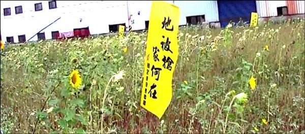「在水泥跑道上播種」劇照。(陳曉雯提供)