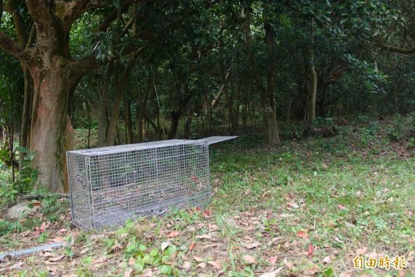 捕獸籠一個要價兩萬,農民聽到直呼浪費。(記者陳祐誠攝)