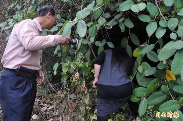 大崗山軍用洞穴大多隱藏在荒煙漫草中,被人所遺忘。(記者蘇福男攝)