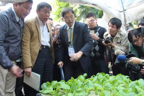 柯文哲昨日到台南參觀虎山國小水耕菜園,表示這樣的栽種模式值得在台北市推廣。(資料照,記者林孟婷攝)