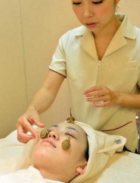 美容界最近掀起一股新風潮,讓活生生的蝸牛在妳臉上爬行,據說能有效抗老化以及滋潤肌膚,這種蝸牛SPA在日本、泰國正盛行。(圖擷取自都市報)