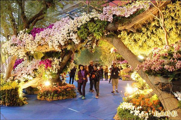 蘭花景觀佈置成隧道。(記者楊金城攝)
