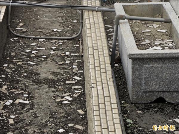 北港鎮代表會大樓疑因屋齡過久,外牆最近竟下起「瓷磚雨」,瓷磚散落在花台。(記者陳燦坤攝)