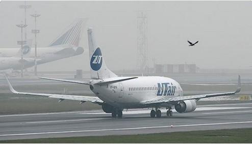 俄羅斯一架波音737客機起飛後引擎故障,被迫降落聖彼得堡機場。(圖擷取自網路)
