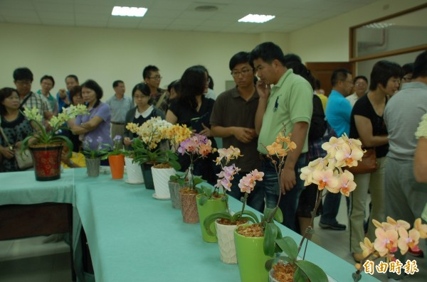 高雄區農業改良場新種蘭花展示會,吸引全國各地蘭友到場取經。(記者李立法攝)