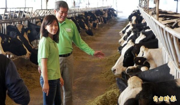 酪農自營牧場,生產最新鮮牛、羊乳。(記者陳文嬋攝)