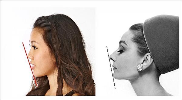 ▲從鼻尖、嘴唇到下巴的線條,不一定非要連成一直線才是美。(照片提供/張博全)