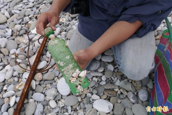 寶特瓶上附著藤壺,黑潮海洋文教基金會主任賴威任推估應該已在海上漂洋一陣子了。(記者王峻祺攝)