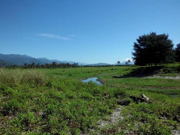 知本溼地因人為破壞景觀驟變,卡大地布部落族人決議討回傳統領域。(記者陳賢義翻攝)