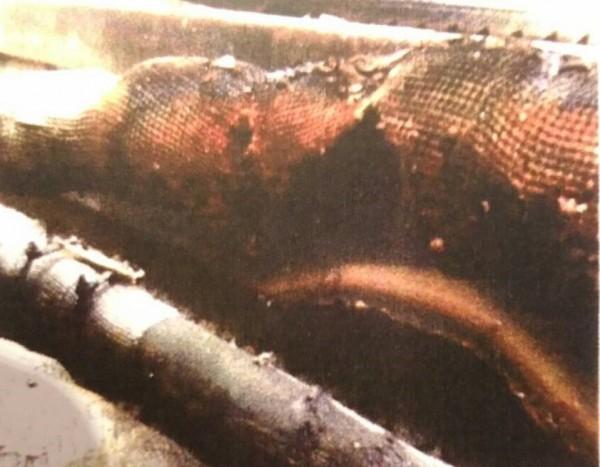 桃園機場捷運爆搶通車出包,37處電纜因施工不當燒毀,恐影響行車安全。(記者黃立翔翻攝)