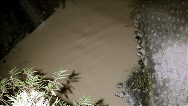 市民代表林威志26日晚間10時許拍下的排水溝水色呈石灰色。(圖:林威志提供,記者王秀亭翻攝)