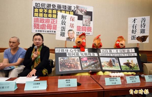 民進黨籍立委田秋堇(左二)今日於立法院召開記者會,呼籲政府正視殘虐母雞的格子籠飼養問題,避免「藥殘蛋」流入市面。(記者羅沛德攝)