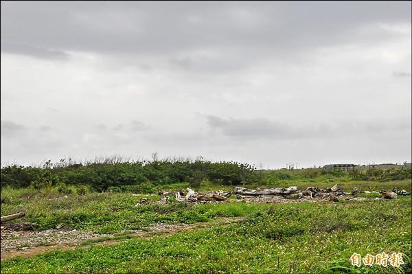 東管處預計往北擴大加路蘭遊憩區規模,預定地多為休耕地。(記者黃明堂攝)