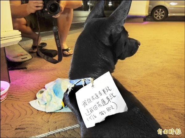 網友幫小黑狗掛上「我從花蓮來,送我回花蓮車站」紙條。(記者王錦義攝)