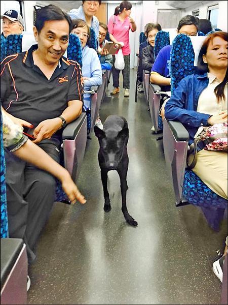 黑狗搭火車,引起乘客們的關注,拍照貼上臉書,吸引數千網友追蹤。(記者王錦義取自臉書)