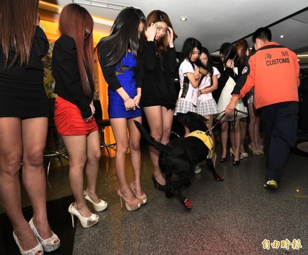 政府部門執勤犬的工時每週40小時,最快在6月就會實施,圖為海關緝毒犬支援中山分局查緝特種營業場所毒品的畫面。(資料照,記者陳志曲攝)