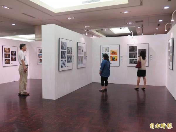 2015新光三越國際攝影聯展,帶領民眾進入鏡頭下的世界。 (記者黃文鍠攝)