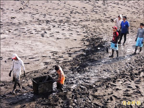 新竹漁港南寮舊漁港首次進行淨港活動,近百人在泥濘又臭的港區撿輪胎和玻璃瓶,呼籲民眾不要再丟棄垃圾。(記者洪美秀攝)