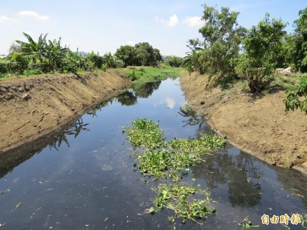 南市安南區六塊寮排水,髒黑不見河底。(記者洪瑞琴攝)