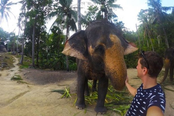 這隻大象用鼻子捲走了相機,並拍下自己與勒布朗的合照。(圖取自鏡報)