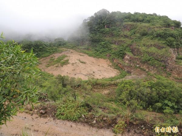 亞泥委託的顧問公司表示,舊礦區(如圖)已做好植披保護。(記者廖雪茹攝)