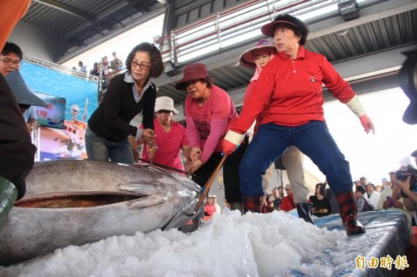 「第一鮪」拍賣,漁工正使力將重量破紀錄的第一鮪拉上拍賣台。(記者陳彥廷攝)