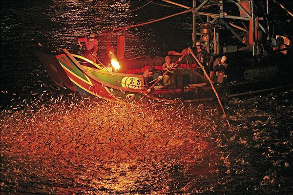 金山「蹦火仔」漁法捕撈青麟魚,形成相當美麗的耀眼景觀。(新北市農業局提供)
