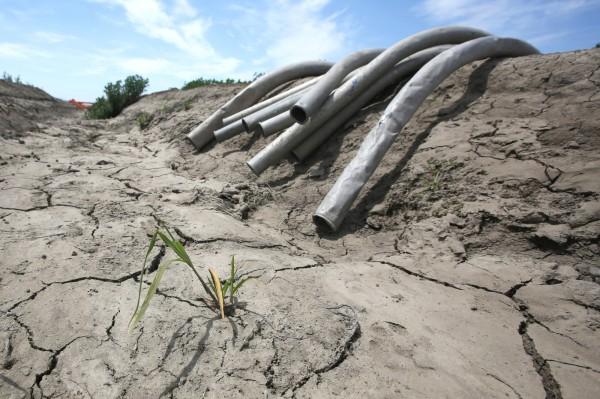 加州缺水問題嚴重。(美聯社)