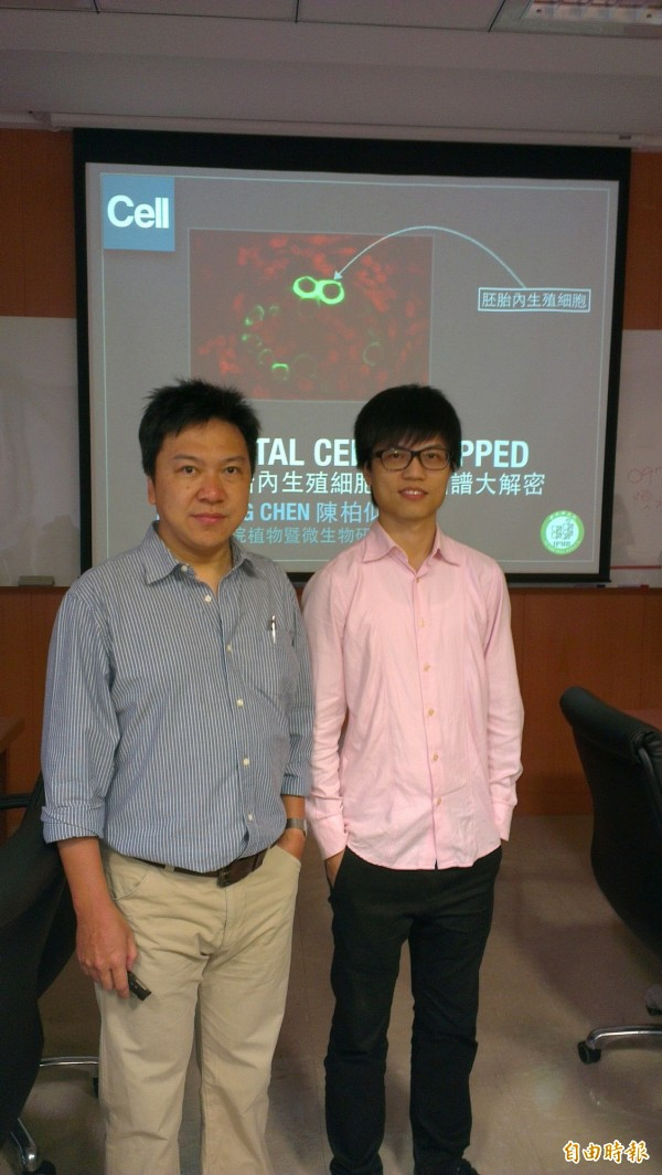 中研院植物暨微生物學研究所助研究員陳柏仰(左)團隊精確計算出懷孕初期胚胎內的生殖細胞在57~113天內處於極度脆弱時期,也可能造成下一代不孕,研究成果刊登國際頂尖期刊《細胞(Cell)》。右為研究助理廖玟崴。(記者湯佳玲攝)