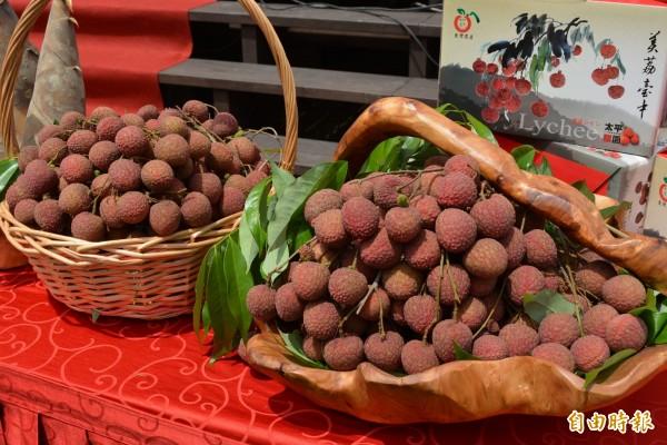 太平荔枝成熟了,太平農會邀請大家採荔枝、吃荔枝。 (記者陳建志攝)