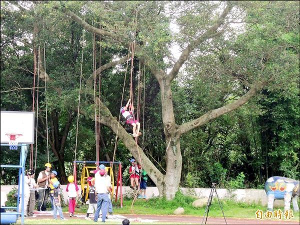 清水國小學生攀樹體驗,考驗專注力和手眼協調能力,也學習愛護樹木。(記者廖雪茹攝)