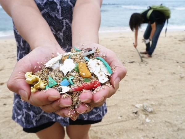 今年夏天來一場愛海小旅行,邀請朋友一起關心海洋。(荒野保護協會提供)