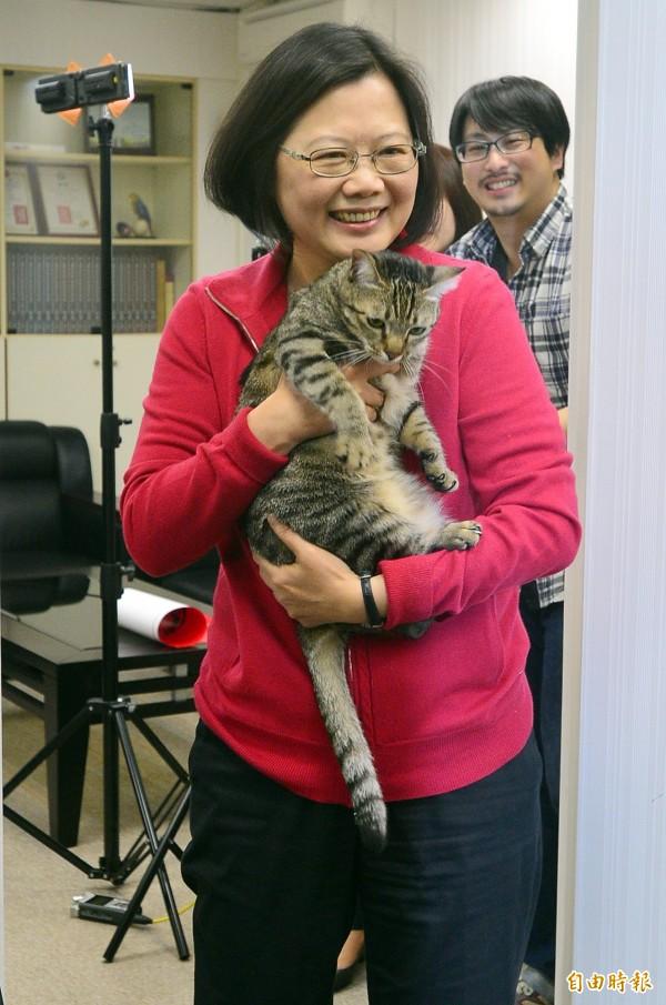 蔡英文的12天訪美行程進入尾聲,她表示,回台灣後要做的第一件事就是「餵貓」。(資料照,記者王藝菘攝)