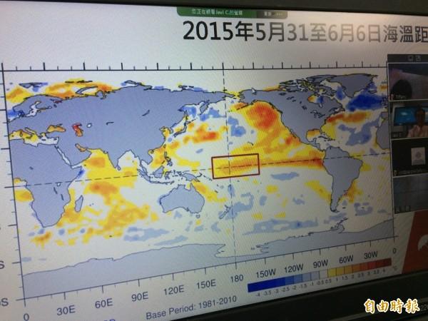 天氣風險公司出示今年5月31日到6月6日的太平洋海溫圖,顯示出中太平洋的海溫偏高。(記者甘芝萁攝)