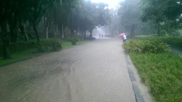 台北市公館區突降豪雨,2小時內降下超過160毫米的雨量。(圖擷取自PTT)