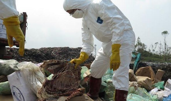 中國海關6月查獲多起冷凍肉品走私案,走私肉品中竟有40歲高齡的肉品,搜查警員表示現場臭氣沖天。(圖擷取自中國日報)