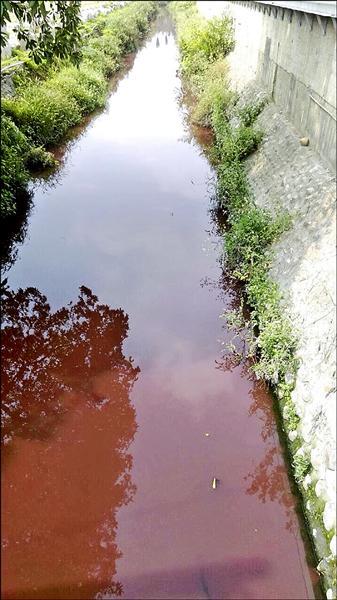 民眾拍攝的畫面,湳港排水呈現豬肝紅。(民眾提供)