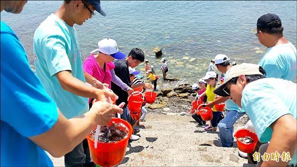 志工們接力放流魚苗下水。(記者林欣漢攝)