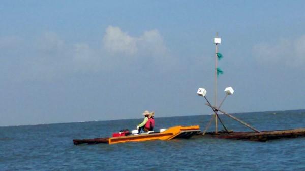 有漁民反映,近來有越來越多泡棉筏、保麗龍筏釣客在沿岸釣魚,甚至出沒在外傘頂洲,誤闖漁船航道,弄壞蚵棚。 (記者林宜樟翻攝)