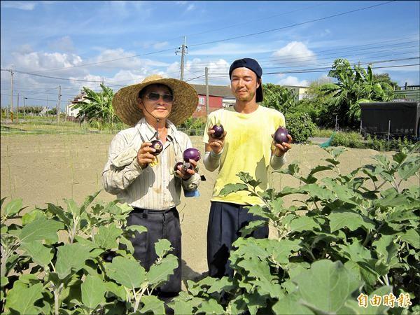 日本人(右)跟著新農人凃正男(左)務農。(記者楊金城攝)