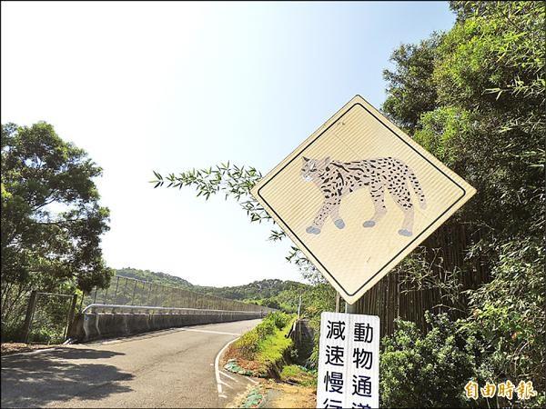 護網遭剪破的事發地點,是高公局設置的「石虎保育步道」。(記者蔡政珉攝)