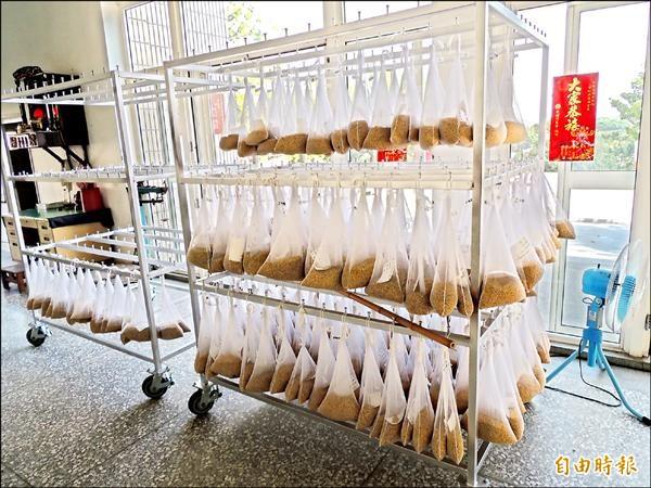 農糧署開始抽驗收繳公糧,農民認為揪出用藥「老鼠屎」很好,但稻穀依舊混在一起放入倉庫,一旦真有藥物殘留,等於讓「一顆老鼠屎壞了一鍋粥」。圖為抽樣待驗的稻穀。(記者蔡政珉攝)