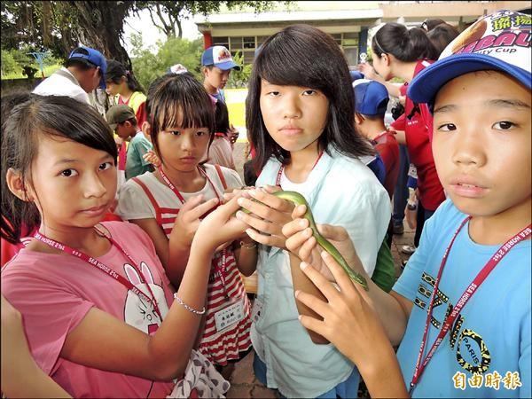 連小女生都敢將青蛇放在手上,觸摸感覺蛇的爬行和體溫。(記者楊金城攝)